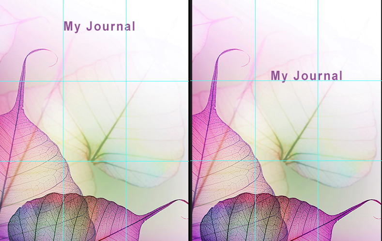 Two journals, side by side